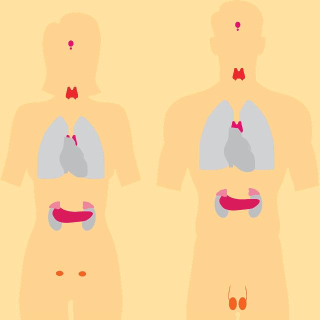 थायरॉईड ची लक्षणे व घरगुती उपाय । thyroid symptoms in marathi
